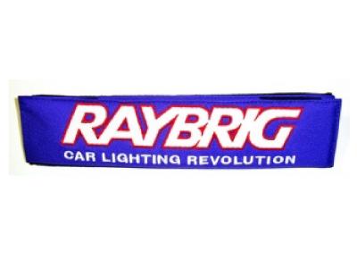 ray0029
